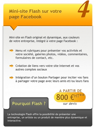 facebook-594-1- mini site flash